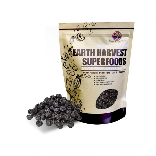 Earth Harvest Superfoods 有機生機藍莓乾
